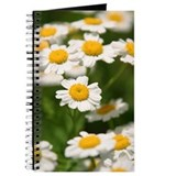 Cute Daisy photo Journal