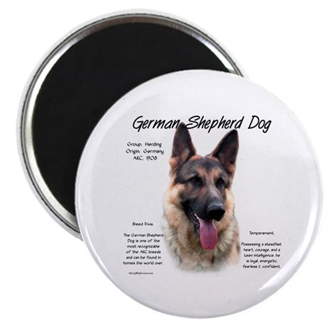 GSD Magnet