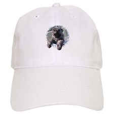 Sleeping Lady's Bouviers Baseball Cap