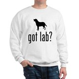 Labrador Retriever Jumper