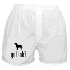 Labrador Retriever Boxer Shorts