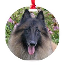 Tervuren Ornament
