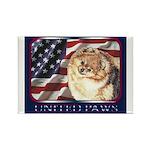 Pomeranian United US Flag Rectangle Magnet (10 pac
