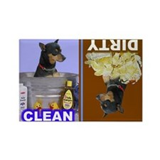 Cool Miniature pinscher Rectangle Magnet