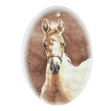 Palomino Filly Oval Ornament