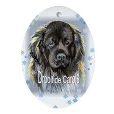"Newfoundland ""Drooltide Carols"" Oval Ornament"