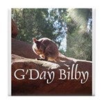 Black Footed Wallaby Tile Coaster