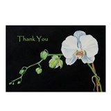 White Orchid Thank You Postcards (Package of 8)