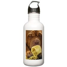 Dogue de Bordeaux Water Bottle