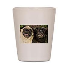 Pug Pair Shot Glass
