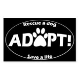 Adopt Bumper Stickers (White on Black) Bumper Stickers