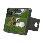 .the boys. Rectangular Hitch Cover