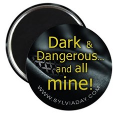 Dark Dangerous Magnet