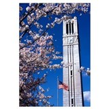 NC State University Photographs Bell Tower in Spri