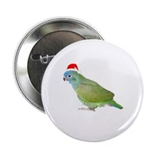Blue Headed Pionus in Santa Hat Button
