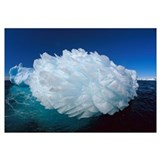 Hedgehog iceberg, Terre Adelie Land, east Antarcti