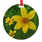 .coreopsis. Round Ornament