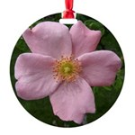.light pink rose. Round Ornament