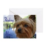 Yorkie &quot;Thinking of You&quot; Greeting Cards (Pk of 10)