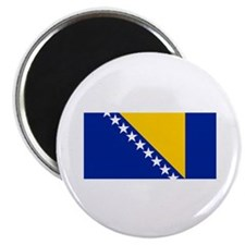 Bosnia and Herzegovina flag Magnet