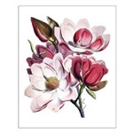 Pink Magnolia Flowers Small Poster