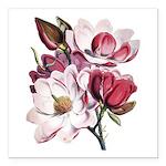 Pink Magnolia Flowers Square Car Magnet 3