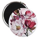 Pink Magnolia Flowers 2.25