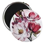 Pink Magnolia Flowers Magnet
