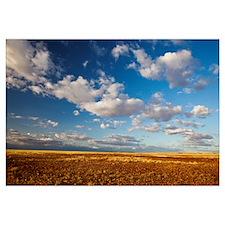 Sturt Stony Desert with cumulus clouds, Queensland