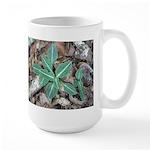 Best Rattlesnake Plantain Large Mug