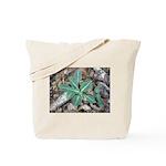 Rare Rattlesnake Plantain Tote Bag