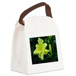 .pale yellow. Canvas Lunch Bag
