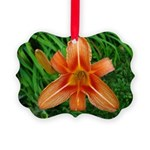 .orange daylily. Picture Ornament