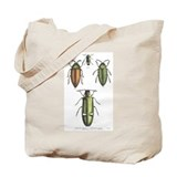 Beetle Insects Tote Bag