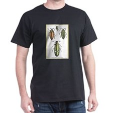 Beetle Insects (Front) Black T-Shirt