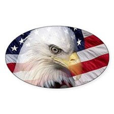 American Pride Decal