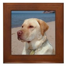 Sept Lab of the Month Framed Tile