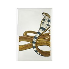 Cobra snake Rectangle Magnet