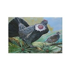 blue grouse Rectangle Magnet (100 pack)
