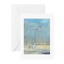 Misty Landing Greeting Cards (Pk of 20)