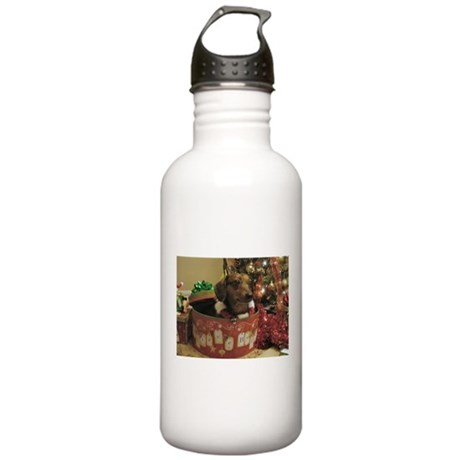 Christmas Dachshund Stainless Water Bottle 1.0L