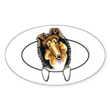 Collie Sheltie Peeking Bumper Decal