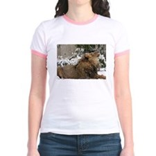 Lion in Snow Jr. Ringer T-Shirt
