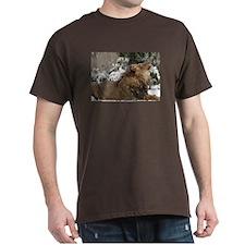 Lion in Snow Dark T-Shirt