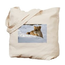 Female Lion in Snow Tote Bag