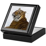 Tiger Laying In Snow Keepsake Box