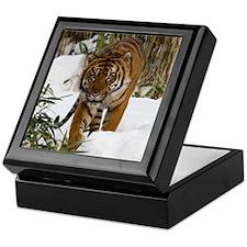 Tiger Walking in Snow Keepsake Box