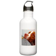 Candy corn dog Water Bottle