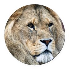 Lion Round Car Magnet