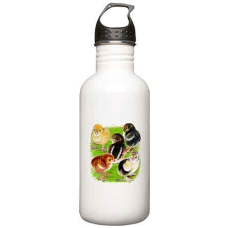 Five Chicks Stainless Water Bottle 1.0L